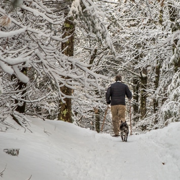 snowshoeing northern vt